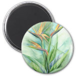 Tropical Flower Bird Of Paradise Painting - Multi Refrigerator Magnets