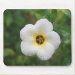 Tropical Flower Cayman Islands White Mouse Pad