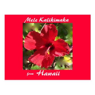 Tropical Flower Christmas photo card Post Cards