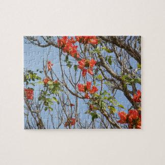 Tropical flower fiesta- flamboyan jigsaw puzzle