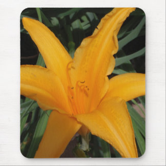 Tropical Flower Mouse Pad
