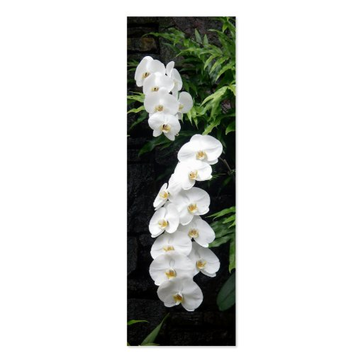 Tropical Flowers Bookmark Double-Sided Mini Business Cards (Pack Of 20)