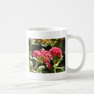 Tropical Flowers Floral Pink Hawaii Nature Coffee Mug