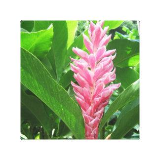 Tropical Flowers Near Hilo Hawaii Gallery Wrap Canvas