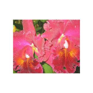 Tropical Flowers Near Hilo Hawaii Stretched Canvas Print