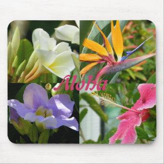 Tropical Flowers of Kauai Hawaii Hibiscus Plumeria Mouse Pad