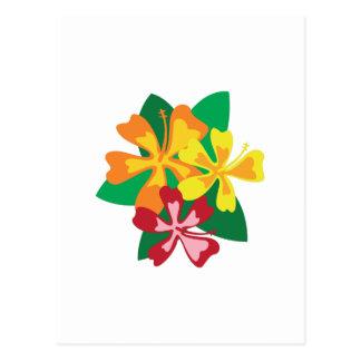 Tropical Flowers Postcard