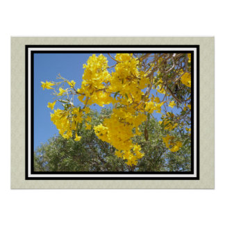tropical flowers Roble Amarillo Poster