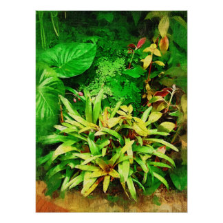 Tropical Foliage - Afternoon in the Greenhouse Poster