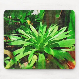 tropical foliage collection , fairchild tropical g mouse pad