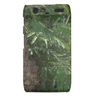 Tropical Forest Droid RAZR Covers