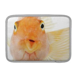 Tropical freshwater fish MacBook sleeves