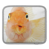 Tropical freshwater fish sleeve for iPads