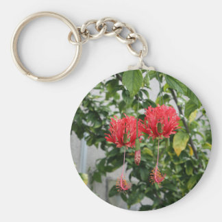 Tropical Fringed Coral Hibiscus Flower Basic Round Button Keychain