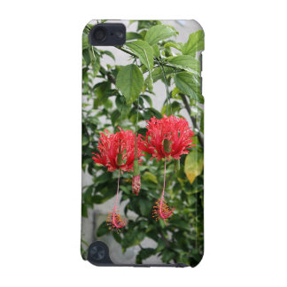 Tropical Fringed Coral Hibiscus Flower iPod Touch (5th Generation) Case