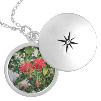 Tropical Fringed Coral Hibiscus Flower Round Locket Necklace