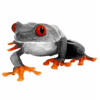 Tropical Frog Ornament..! Photo Sculpture Ornament