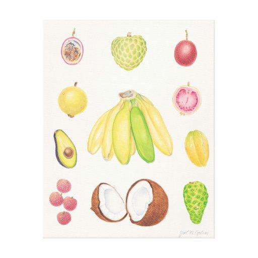 Tropical Fruit II Canvas Print