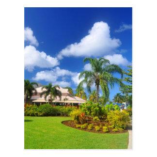 Tropical garden postcard