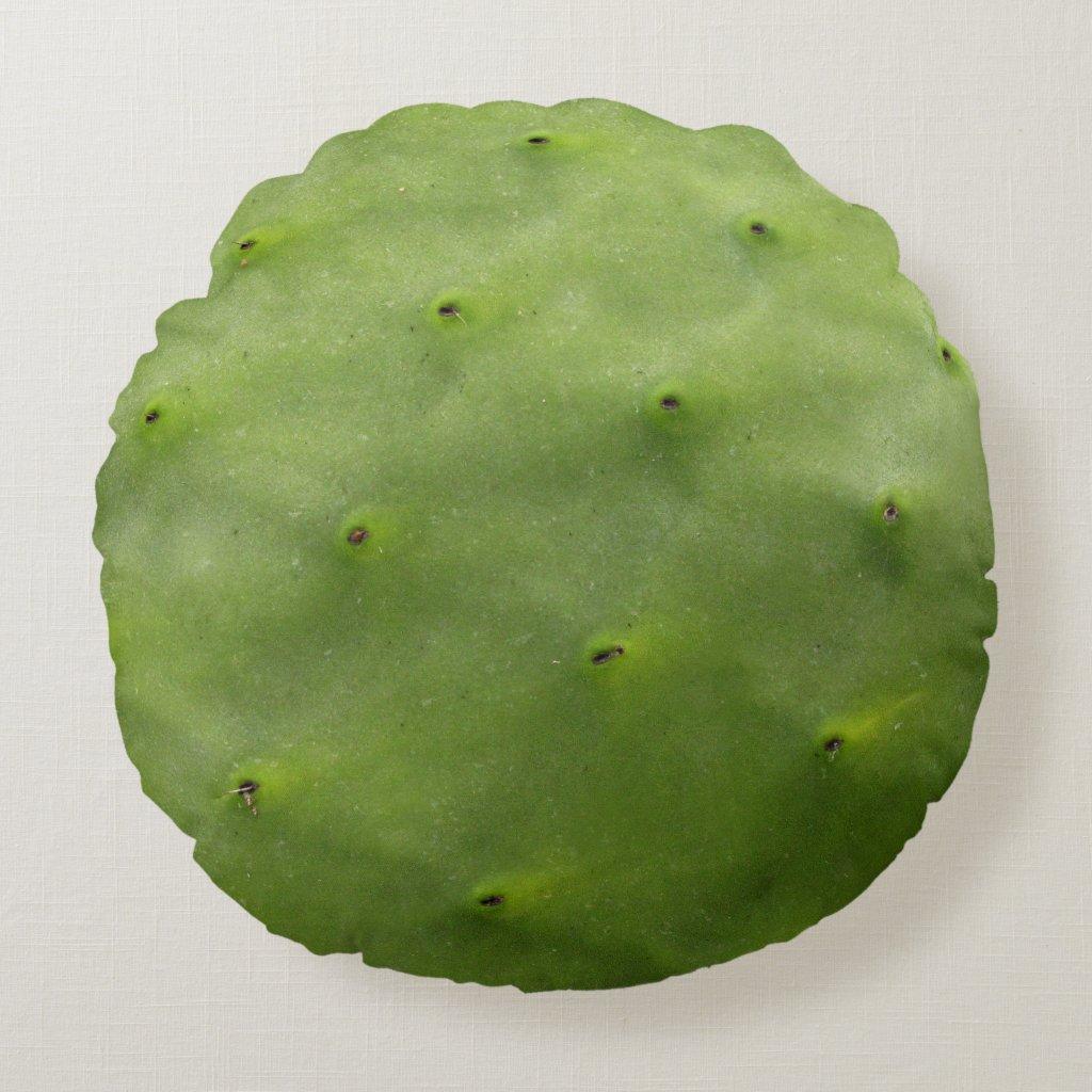 Tropical Green Cactus Photo