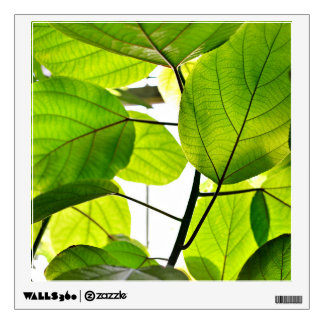 Tropical Green Leaves Wall Decal