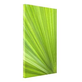 Tropical Green Palm Frond Wrapped Canvas Print
