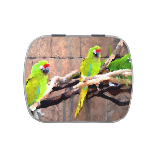 tropical green parrots painted look jelly belly tins