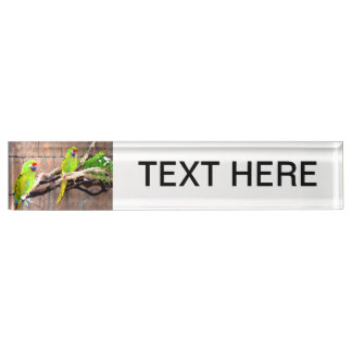 tropical green parrots painted look name plates