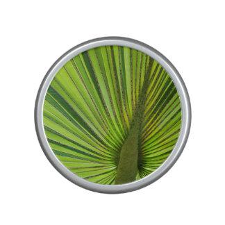 Tropical Green Speaker