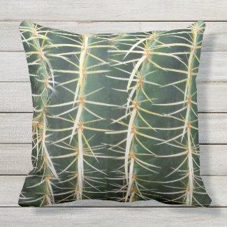 Tropical Green Sphere Cactus Photo