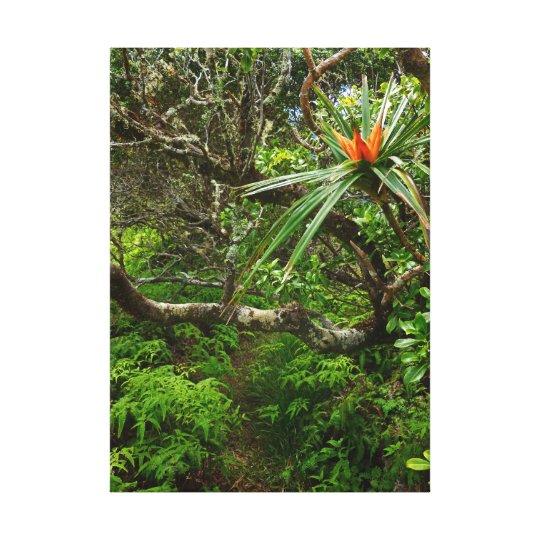 Tropical Hawaii Canvas Print
