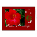 Tropical Hawaii Red Hibiscus, Merry Christmas Greeting Card