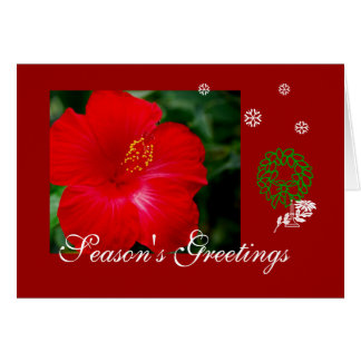 Tropical Hawaii Red Hibiscus, Merry Christmas Card