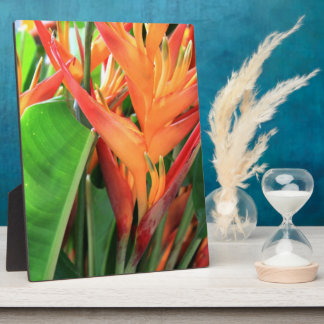 Tropical Heliconia Flowers Plaque