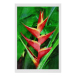 Tropical heliconia oil painting collection poster