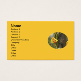 Tropical Hummingbird and Flower Business Card