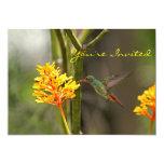 "Tropical Hummingbird and Flower 5"" X 7"" Invitation Card"