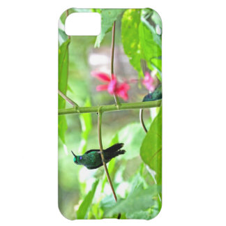 Tropical Hummingbird and Flowers iPhone 5C Covers