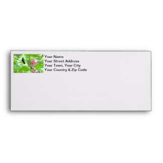 Tropical Hummingbird and Flowers Envelope