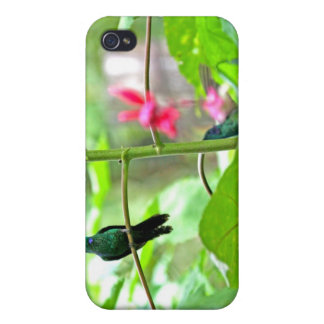Tropical Hummingbird and Flowers iPhone 4 Cover