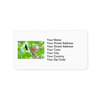 Tropical Hummingbird and Flowers Personalized Address Label