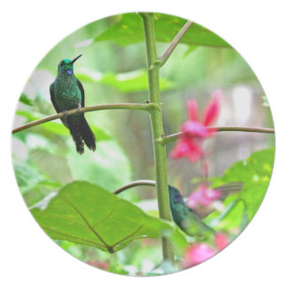Tropical Hummingbird and Flowers Party Plates