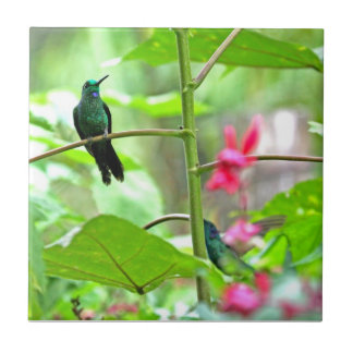 Tropical Hummingbird and Flowers Tile