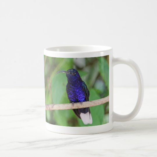 Tropical Hummingbird Coffee Mug