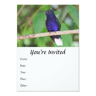 "Tropical Hummingbird 5"" X 7"" Invitation Card"