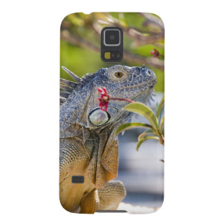 Tropical Iguana Case For Galaxy S5