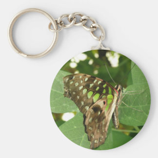 Tropical Iridescent Green Butterfly Keychain