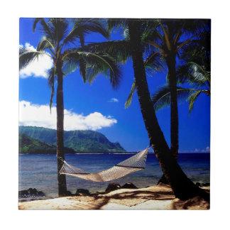 Tropical Island Afternoon Nap Kauai Hawaii Tile