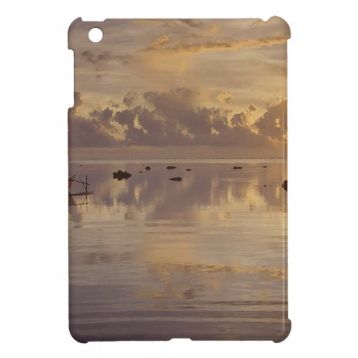 Tropical Island Daybreak Cook Case For The iPad Mini