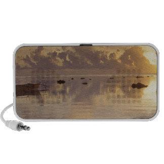 Tropical Island Daybreak Cook Mini Speaker